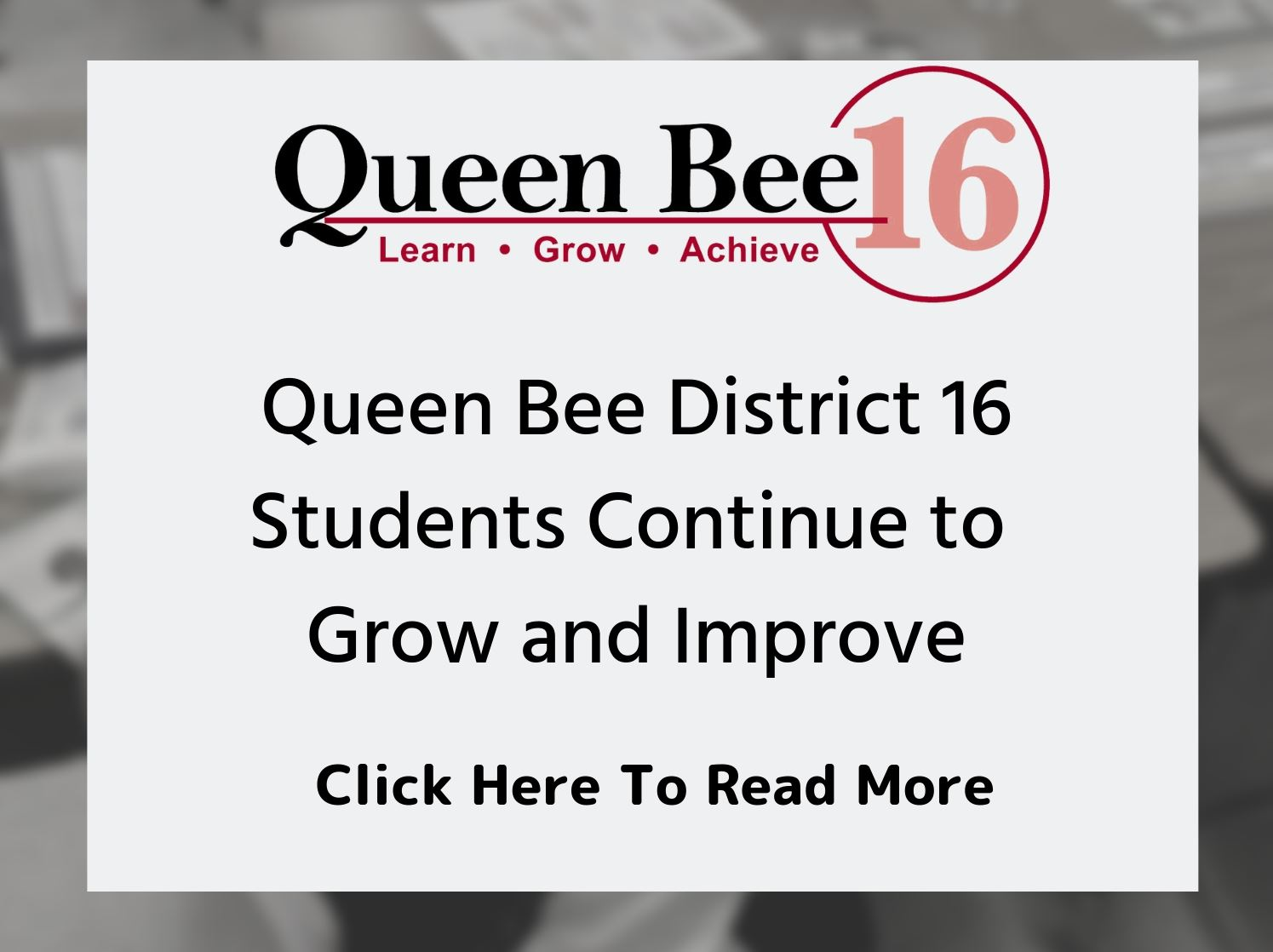 Queen Bee 16 Illinois School Results